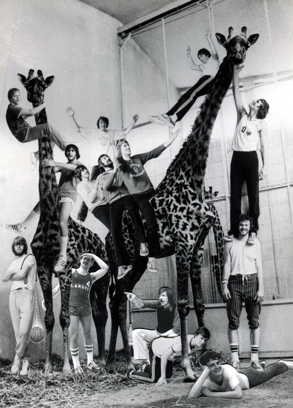 13.Saison 78-79_Foto-3_Das Langener â_Giraffenâ_-Team