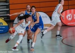 Rhein-Main Baskets bei Aufsteiger Schwabach